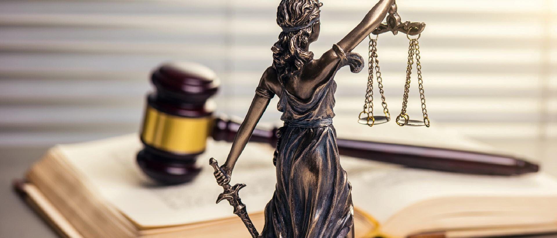 весы, правосудие, законность, НКО